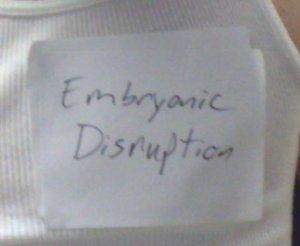 embrionic disruption